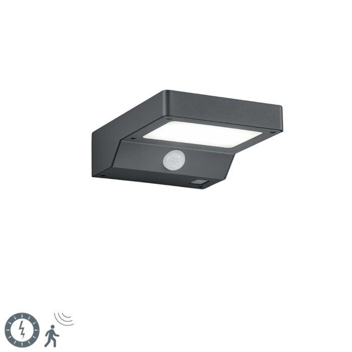 Vanjska-zidna-svjetiljka-antracit-sa-senzorom-pokreta-na-solarnoj---Fomos