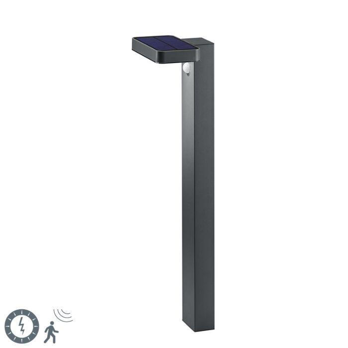 Stojeća-vanjska-svjetiljka-antracit-sa-senzorom-pokreta-na-solarnoj---Esqu