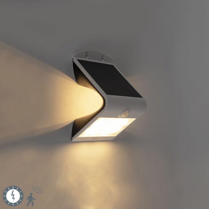 Reflektor-bijeli,-uključujući-LED-sa-senzorom-pokreta-IP65-solarni---Daya